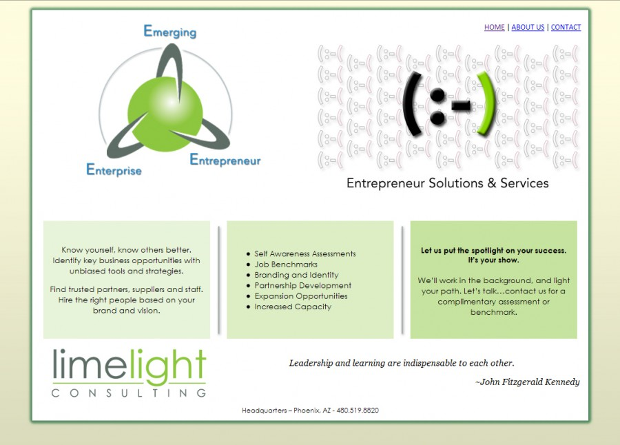 Limelight Consulting Website